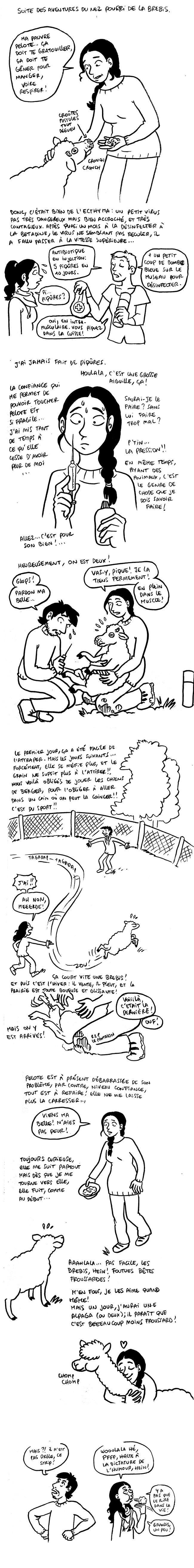 http://melaka.free.fr/blog/ecthyma.jpg