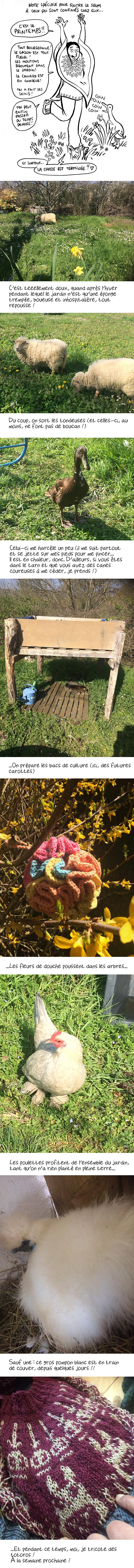 http://melaka.free.fr/blog/printemps2021.jpg